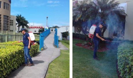 Fumigación y Fertilización Orgánica de Plantas