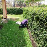 Mantenimiento-de-jardines-(2)