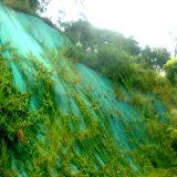 control-de-erosion(3)